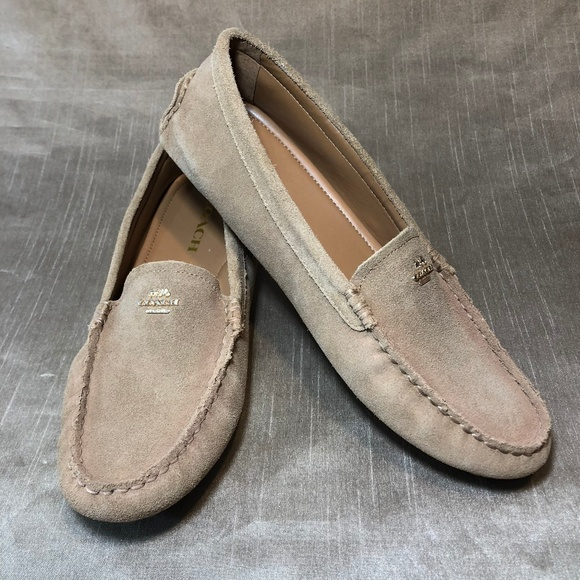 9a2b0d2f4af Coach Shoes - New Coach Amber Suede Driving Loafers 8-1 2
